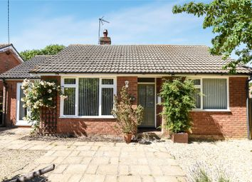 Thumbnail 4 bed bungalow for sale in Church Lane, Ropsley