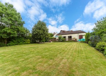 Thumbnail 4 bedroom detached bungalow for sale in Brook Mead, Off Meadow Walk, Ewell