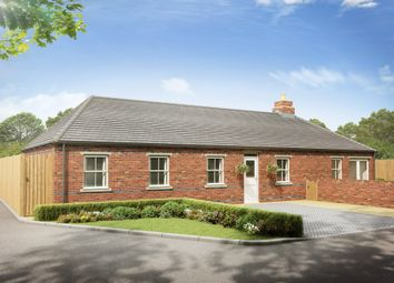 Thumbnail 4 bed detached bungalow for sale in Hardy Street, Kimberley, Nottingham