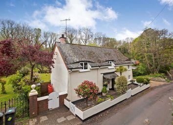 Thumbnail 4 bedroom detached house for sale in Nadderwater, Exeter, Devon