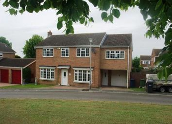 Thumbnail 5 bedroom detached house to rent in Meadow Way, Great Paxton