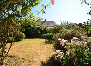 Thumbnail 2 bed bungalow to rent in Coombe Vale, Saltdean, Brighton