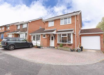 Thumbnail 3 bedroom detached house for sale in Grebe Close, Basingstoke