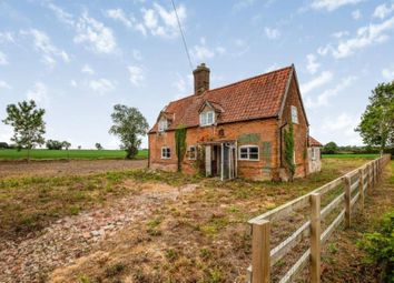 Thumbnail 3 bed detached house for sale in Forncett St. Peter, Norwich, Norfolk