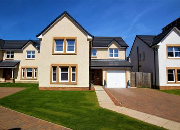 Thumbnail 4 bed property for sale in Edison Court, Motherwell