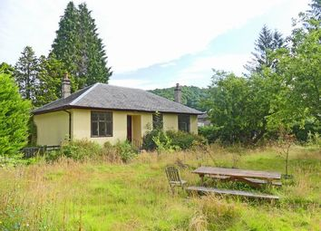 Thumbnail 3 bed bungalow for sale in Dunkeld