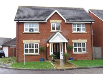 Thumbnail 4 bed detached house for sale in Hoveton Way, Ilford