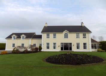 Thumbnail 5 bedroom detached house for sale in Dromore Road, Donaghcloney, Craigavon