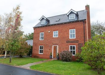 Thumbnail 5 bed detached house to rent in Whitelands, Earswick, York