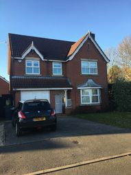 Thumbnail 4 bedroom detached house to rent in Bishopdale Drive, Watnall
