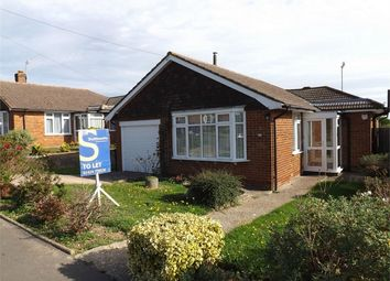 Thumbnail 2 bed detached bungalow to rent in Millham Close, Bexhill-On-Sea, East Sussex