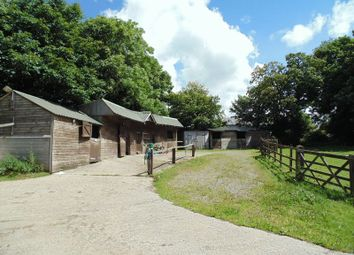 Thumbnail 4 bed equestrian property for sale in North View, Shebbear, Beaworthy