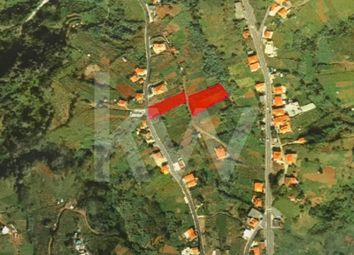 Thumbnail Land for sale in Sitio Do Caminho Chão 9230-086 Santana, Santana, Santana