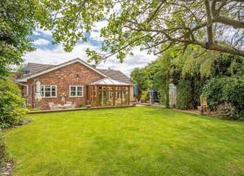Thumbnail 3 bed bungalow for sale in Church Street, Rothersthorpe, Northampton
