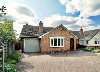 Thumbnail 3 bed detached bungalow for sale in South Otterington, Northallerton