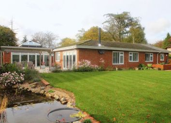 Thumbnail 4 bed detached bungalow for sale in Sandling Road, Lyminge, Folkestone