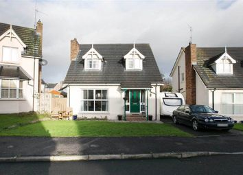 Thumbnail 3 bed detached house for sale in 41, Church Meadows, Dromore