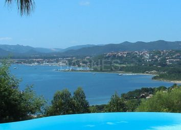 Thumbnail 4 bed property for sale in Porto Vecchio