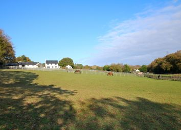 Thumbnail 4 bed equestrian property for sale in Ipers Bridge, Holbury, Southampton