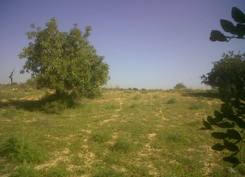Thumbnail Land for sale in Olhão, Olhão, Portugal