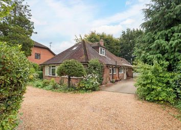 Thumbnail 5 bed detached bungalow for sale in Southwood Road, Farnborough