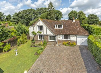 Thumbnail 4 bed detached house for sale in The Common, West Chiltington