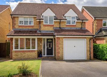 Thumbnail 4 bedroom detached house for sale in Magpie Close, Fareham