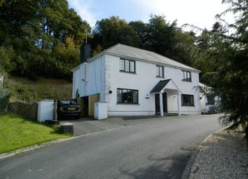 Thumbnail 5 bed detached house for sale in Carmarthen Road, Newcastle Emlyn
