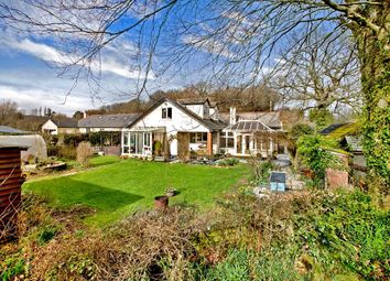 Thumbnail 6 bedroom detached bungalow for sale in Dunsford, Exeter