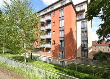 Thumbnail 2 bed flat to rent in Rouen Road, Norwich