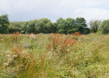 Thumbnail Land for sale in Rhydargeau, Carmarthen