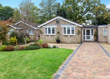 Thumbnail 3 bed semi-detached bungalow for sale in Jessica Avenue, Verwood