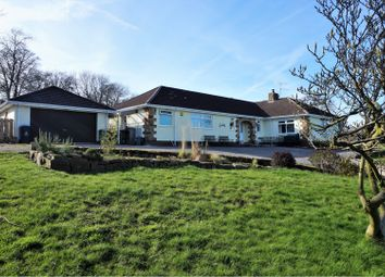 Thumbnail 3 bed bungalow for sale in Wern, Wern, Bersham