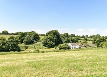 Thumbnail Farm for sale in Beaminster, Dorset