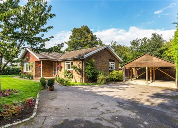 Thumbnail Bungalow for sale in Long Reach, West Horsley, Leatherhead, Surrey