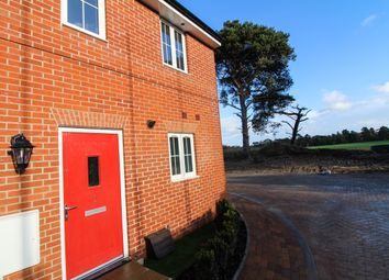 Thumbnail 2 bedroom semi-detached house for sale in Yarrow Walk, Red Lodge, Bury St. Edmunds
