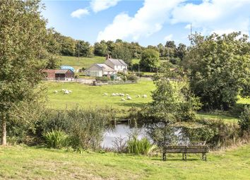 Thumbnail 4 bed equestrian property for sale in Cotleigh, Honiton, Devon