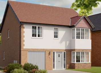 "Thumbnail 4 bed detached house for sale in ""The Rosebury"" at Berry Hill, Mansfield"