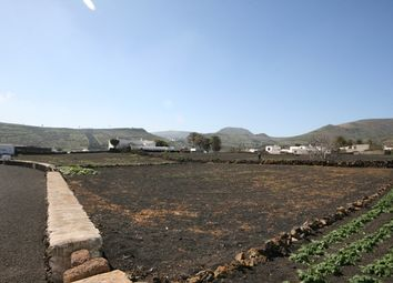 Thumbnail Land for sale in Maguez, Haría, Lanzarote, Canary Islands, Spain