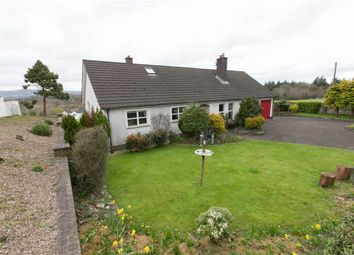 Thumbnail 4 bed detached house for sale in Pinehill Road, Lisburn