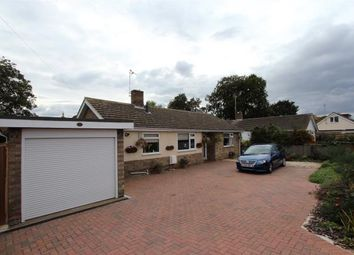 Thumbnail 4 bed detached bungalow for sale in Back Road, Linton, Cambridge