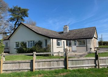 Thumbnail 2 bedroom detached bungalow to rent in Mill Lane, North Tawton