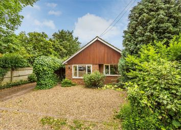 Thumbnail 3 bed detached bungalow for sale in Dudley Road, Walton-On-Thames, Surrey