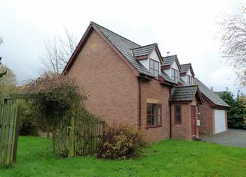 Thumbnail 4 bed detached house for sale in Trefechan, 2, Dolybont, St Harmon, Rhayader, Powys