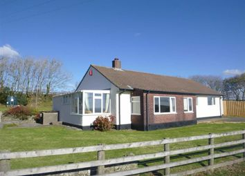Thumbnail 4 bed detached bungalow to rent in Scadghill Farm, Stibb, Cornwall