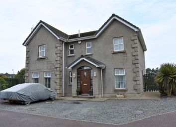 Thumbnail 4 bedroom detached house for sale in The Links, Downpatrick