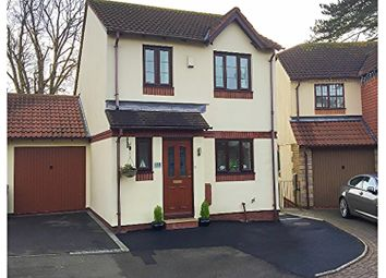 Thumbnail 3 bed link-detached house for sale in Mulberry Close, Paignton