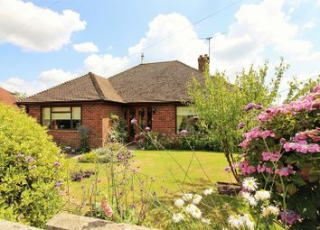 Thumbnail 3 bed detached bungalow for sale in Sopers Field, Chard
