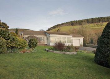 Thumbnail 3 bed bungalow for sale in Llanafan, Aberystwyth, Ceredigion