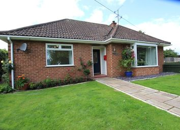 Thumbnail 2 bed detached bungalow to rent in Abbey Road, Pershore